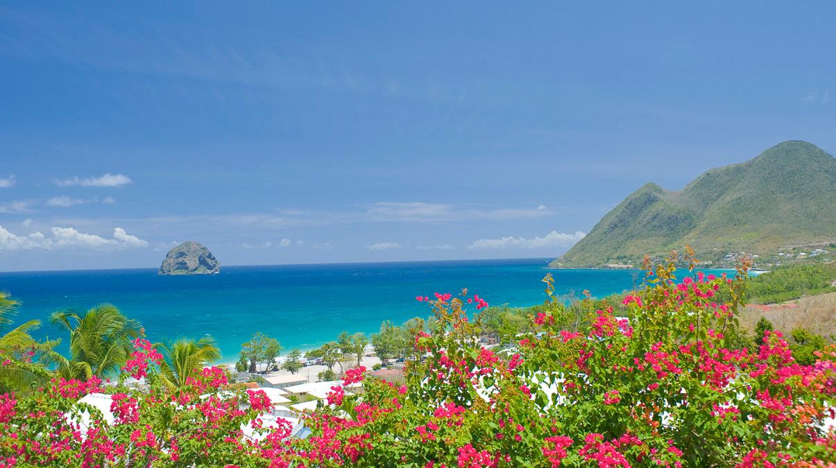 Eco-friendly Martinique